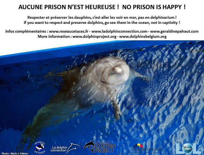 Visuel captivité 28 12 13.jpg